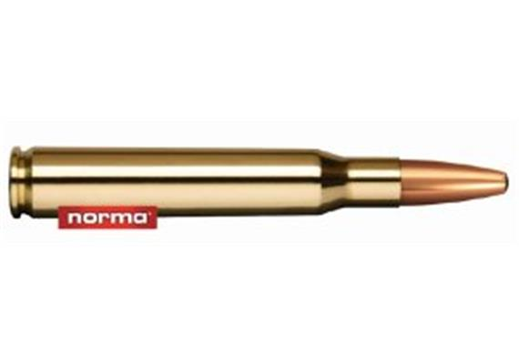 Norma .30-06 165grs Springfield Oryx 20 Schuss